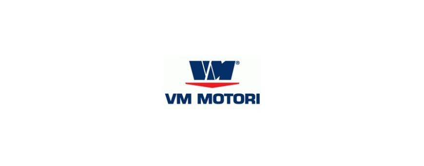 VM MOTOR